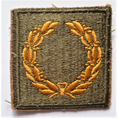 WWII United States Army Meritorious Merit Award Unit patch